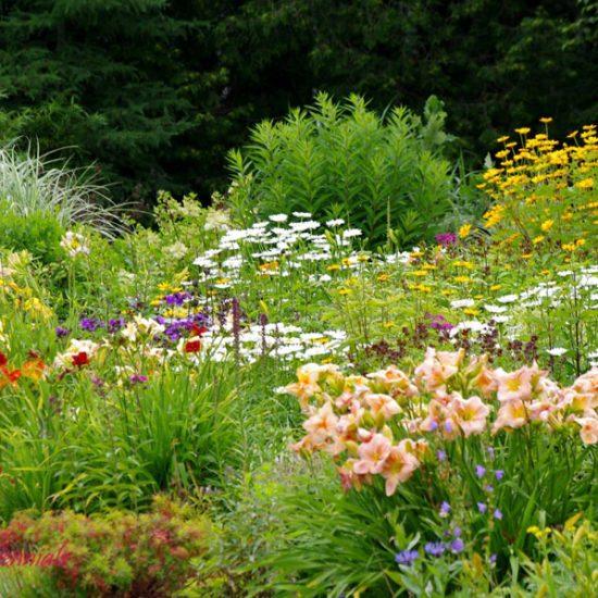 Full sun gardens